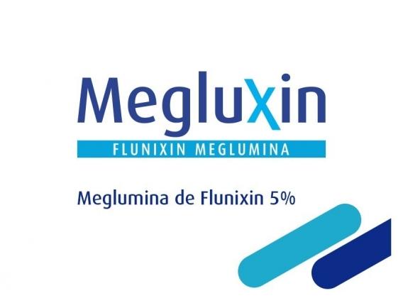 Antiinflamatorio Megluxin